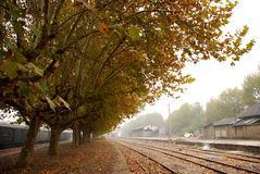 Station in fall. Station and trees in fall Stock Photo