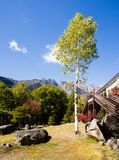 Early fall in Japanese Alps Stock Images