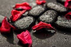 Station thermale de fond. pierres noires et pétales rouges Photographie stock libre de droits