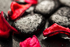 Station thermale de fond. pierres noires et pétales rouges Photo stock