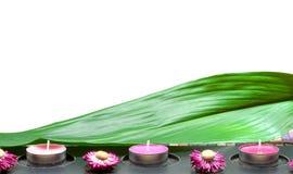 Station thermale. Feuille verte avec la fleur et les bougies photo stock