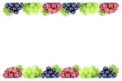 Station thermale organique fraîche de copie de copyspace d'automne de chute de fruit de fruits de raisins photo stock