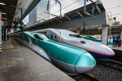 Station in Tokyo, Japan royalty-vrije stock foto