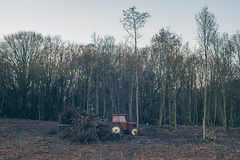 Stationary tractor in autumn forest. Stock Images