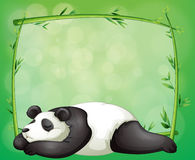 A stationery with a bamboo frame and a panda Royalty Free Stock Images