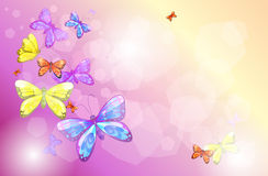 A stationery with colorful butterflies Stock Photography