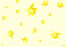 Stationery with daffodil flowers Stock Photography