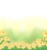 A stationery with a garden of yellow flowers Stock Photography