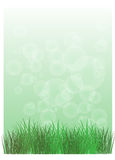 A stationery with green grass Stock Photo