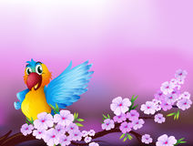 A stationery with a parrot and flowers Stock Photography