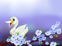 A stationery with a white duck and flowers Royalty Free Stock Photo