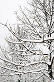 Stationnement à Moscou après la chute de neige importante Photographie stock libre de droits