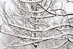 Stationnement à Moscou après la chute de neige importante Images stock