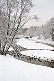 Stationnement à Moscou avec des canards après la chute de neige importante Photo stock