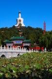 Stationnement à Pékin Photo libre de droits