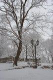 Stationnement 1 de l'hiver Photographie stock libre de droits