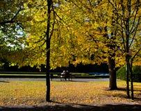 Stationnement coloré d'automne d'automne Photographie stock libre de droits