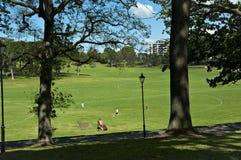 Stationnement d'Auckland Photographie stock libre de droits