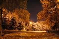 Stationnement d'automne Photo stock