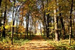 Stationnement d'automne. Photographie stock libre de droits