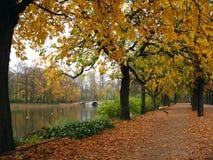 stationnement d'automne photos libres de droits