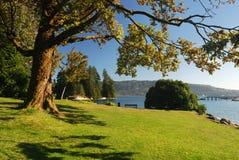 Stationnement de bord de lac Image libre de droits