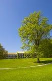 Stationnement de campus au Danemark Photographie stock libre de droits