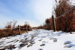 Stationnement de ciel à Séoul en hiver Photographie stock libre de droits