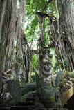 Stationnement de forêt de singe Photographie stock libre de droits