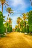 Stationnement de Genoves. Parque Genovés. Cadix. l'Espagne Photos libres de droits