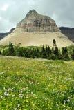 Stationnement de glacier du Montana Images libres de droits