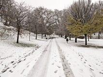 Stationnement de Greenwich dans la neige Photo stock