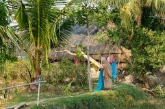 Stationnement de jungle Photos libres de droits