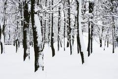 Stationnement de l'hiver Photos libres de droits