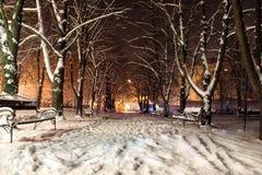 Stationnement de l'hiver Photographie stock libre de droits