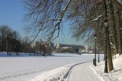 Stationnement de l'hiver Images stock