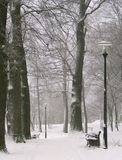 Stationnement de l'hiver Image libre de droits