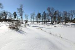 Stationnement de l'hiver Photographie stock