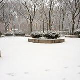 Stationnement de l'hiver image stock