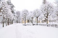 Stationnement de l'hiver, Pavlovsk, St Petersburg, Russie Photos stock
