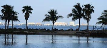 Stationnement de la Floride avec un fond de construction Photographie stock libre de droits