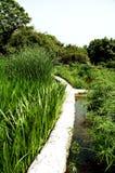 Stationnement de marais image libre de droits