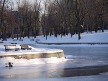 Stationnement de Montréal en hiver Images stock