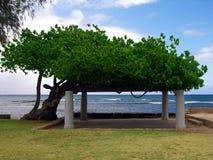Stationnement de plage de Makalei Photos libres de droits