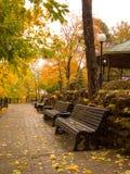 Stationnement de reste en automne Photos libres de droits
