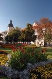 Stationnement de ville avec des fleurs Images libres de droits