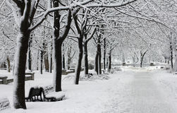 Stationnement de ville de l'hiver photo libre de droits