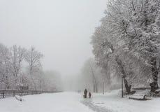 Stationnement de ville de l'hiver dans le matin Photographie stock