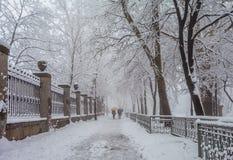 Stationnement de ville de l'hiver dans le matin Photographie stock libre de droits