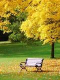 Stationnement de ville en automne Images libres de droits